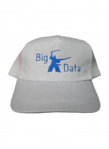 Бейсболка Big Data
